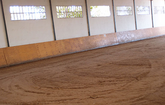 03--Pista-Interior-Cubierta Donde montar a caballo en zaragoza