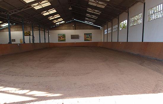 05-Pista-interior-pony-club Donde montar a caballo en zaragoza