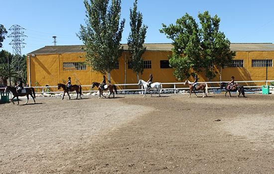 Pista_de_ponys Donde montar a caballo en zaragoza